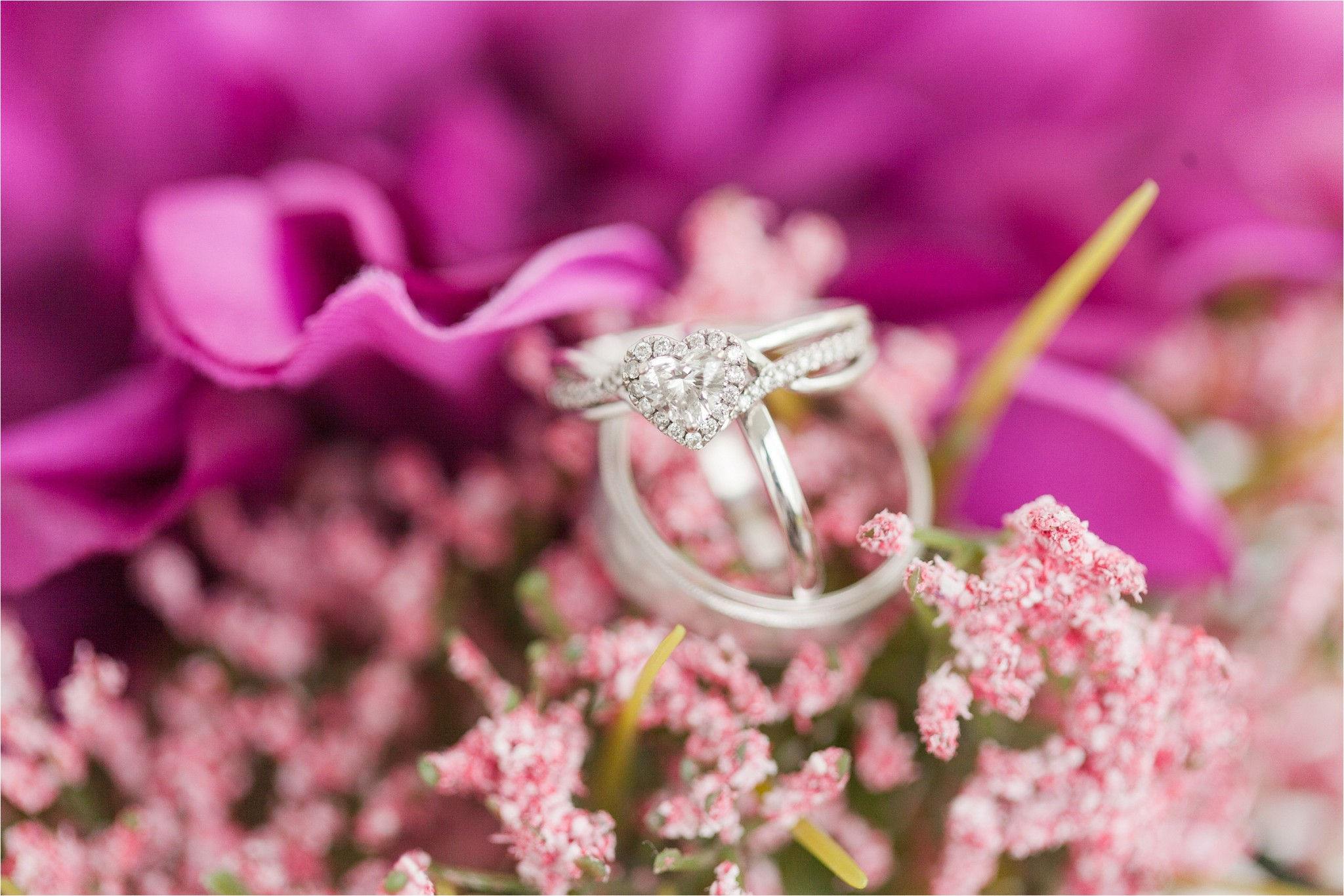 These purple flowers were the perfect backdrop for their rings!