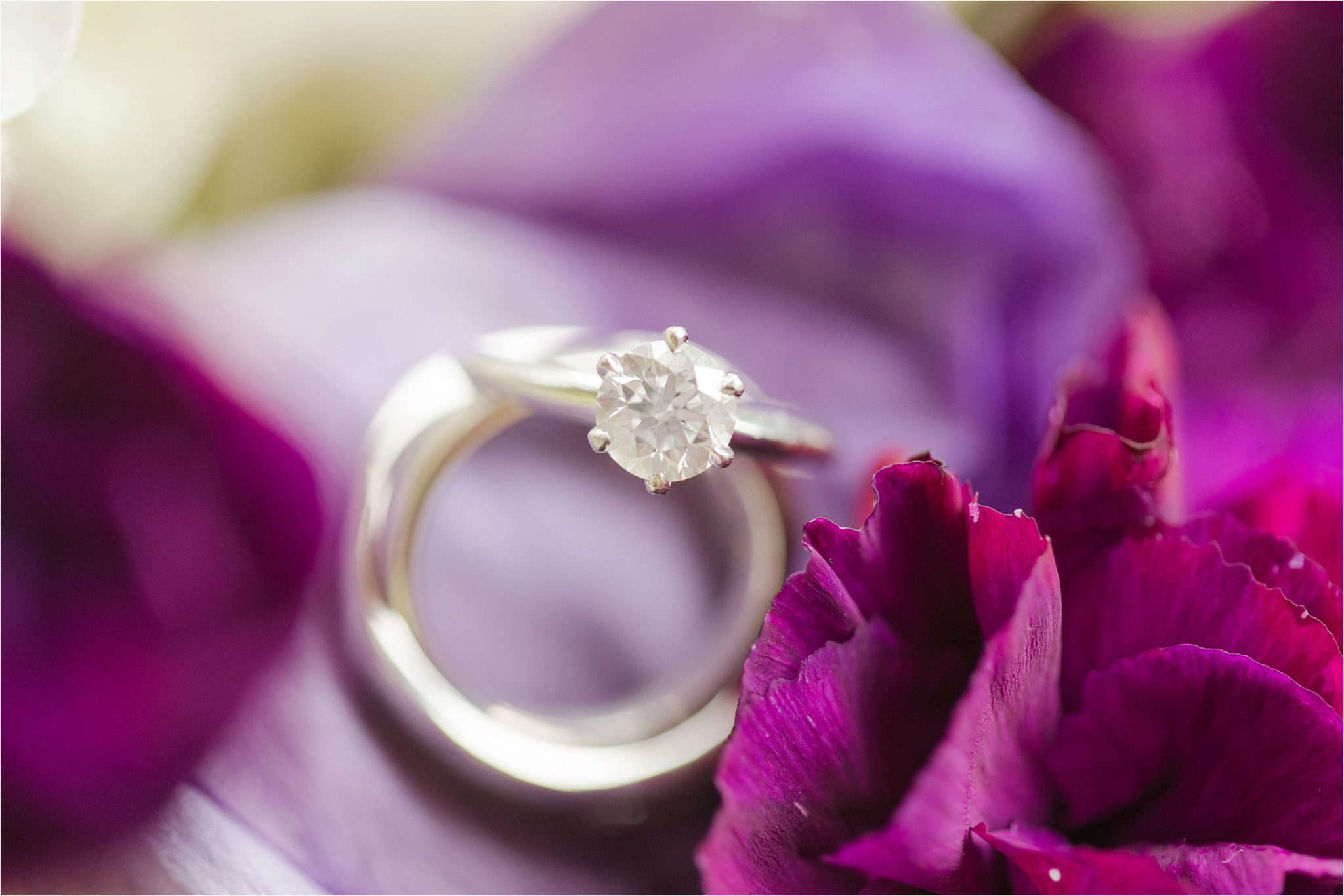 Romantic Destination Wedding ring shot