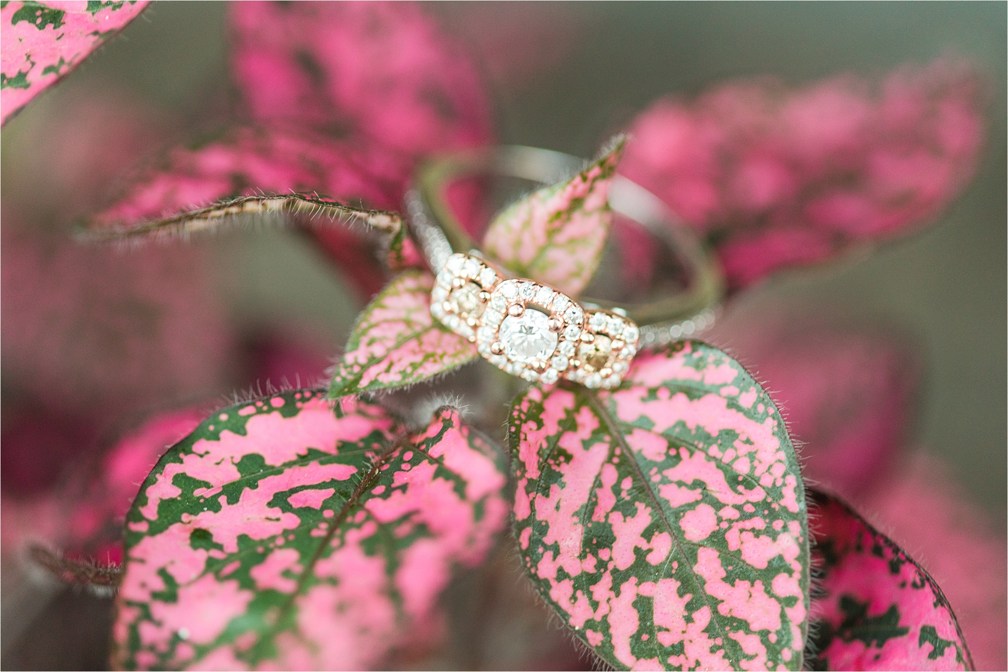 engagement-side-detail-ornate-ring-mixed-metal-triple-halo-three-stone-3-Alabama-wedding-photographer