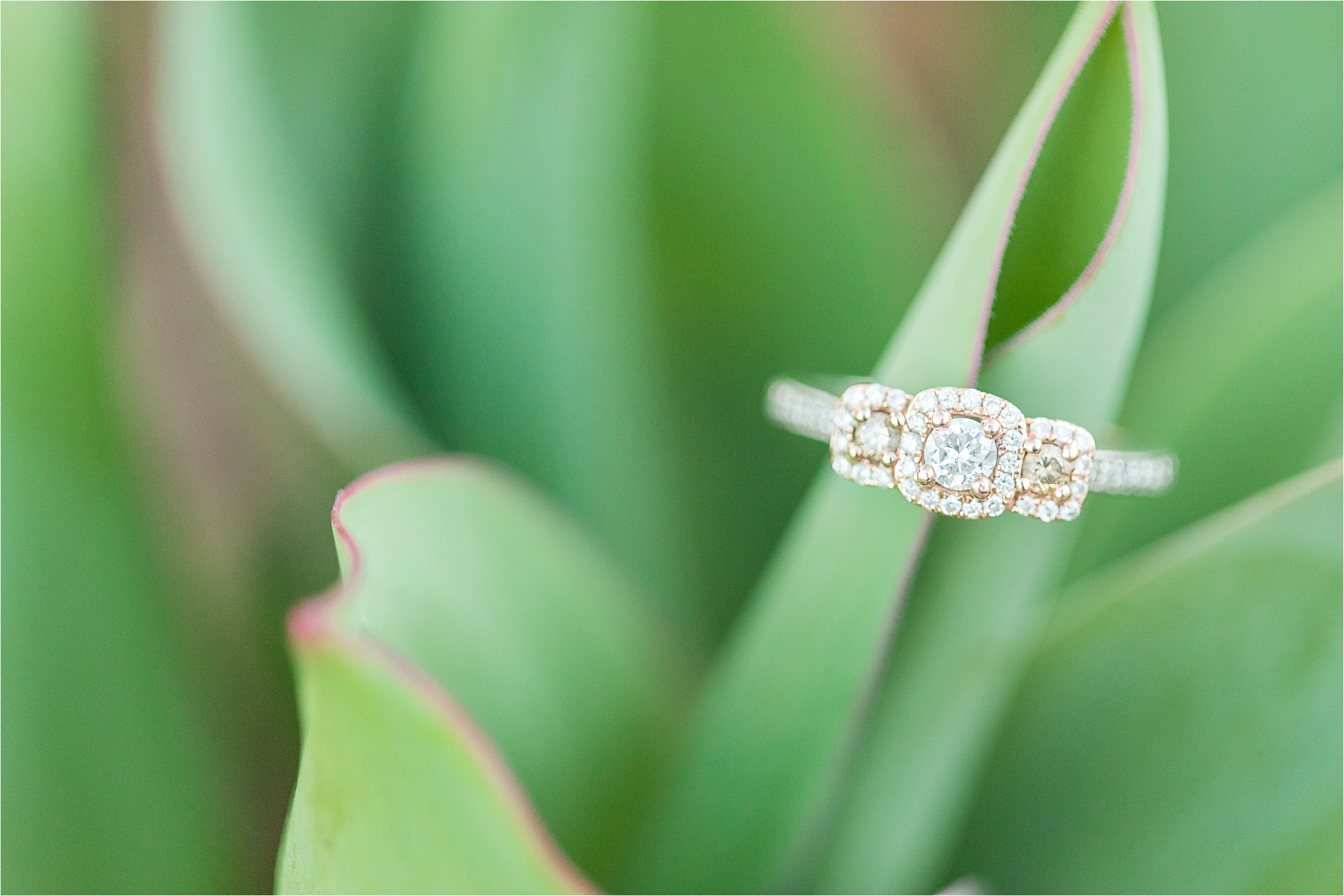 engagement-ring-yellow-gold-triple-halo-three-stone-3-infinity-band
