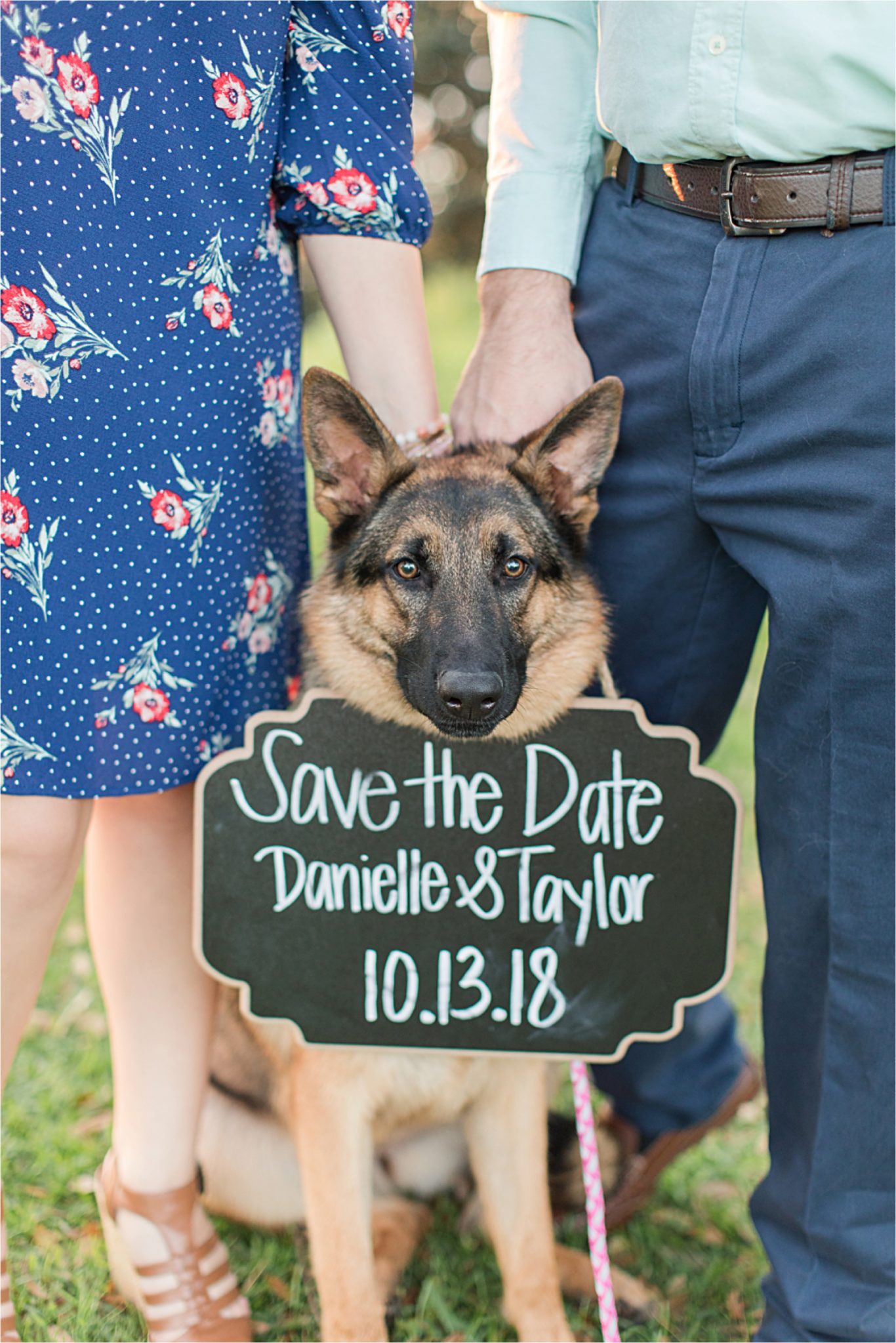 save the date-engagement session-puppy-dog-sign-announcement