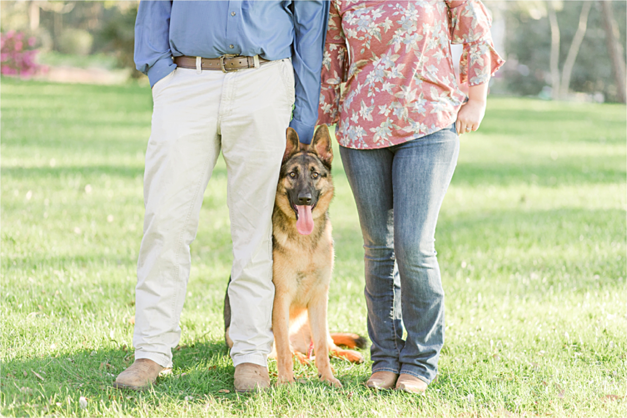alabama-wedding-photographer-engagement-photos-session-dog-family-german-shepherd