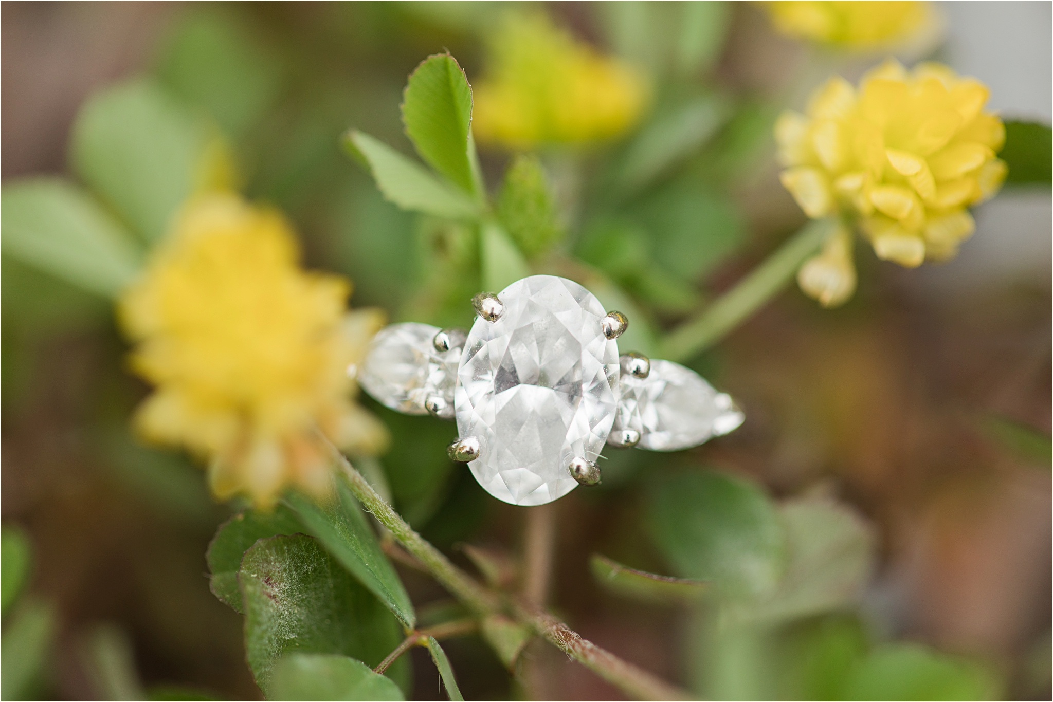 engagement-session-oval-diamond-cut-three-stone-3-white-gold